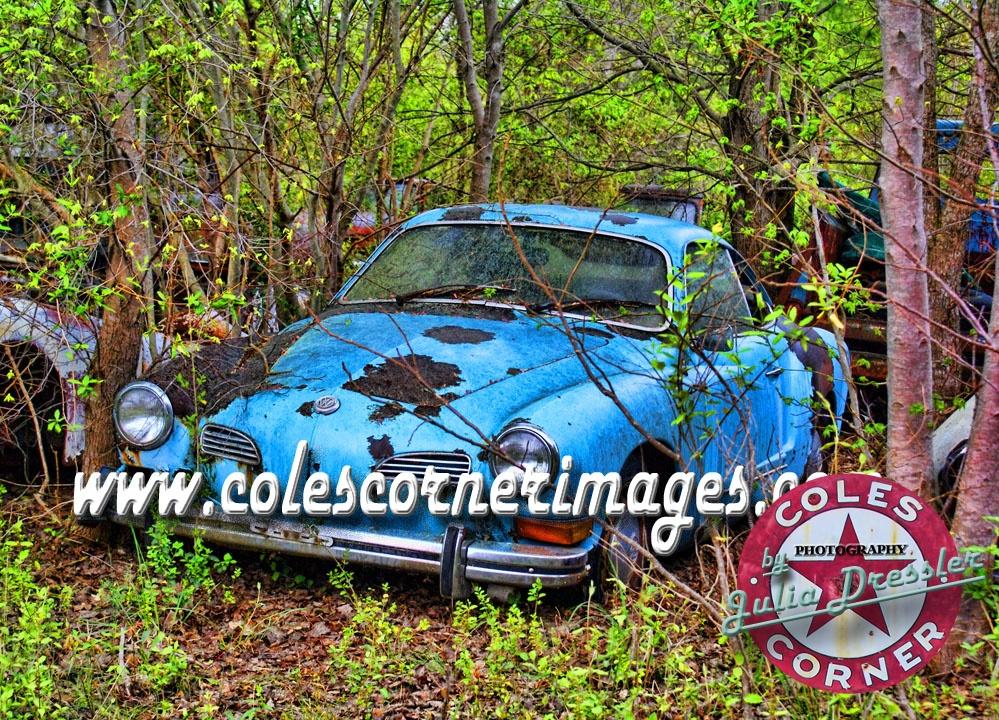 Karmann Ghia lost in the woods