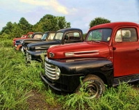Five Fords
