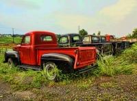 Ford Memories