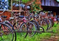 Junkyard bicycles