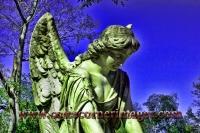Angel of Savannah